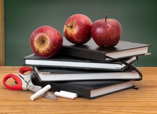 Wady podstawowego programu edukacji